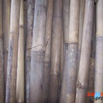 bamboo craft industry
