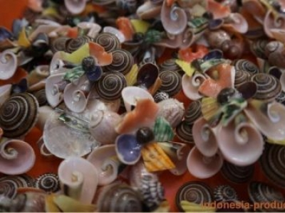 Various Kinds of Shellfish Craft Products