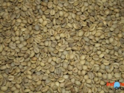 3 Robusta Coffee of Indonesia that Go Export